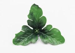 Лист-розетка хризантемы малый тройной 10шт