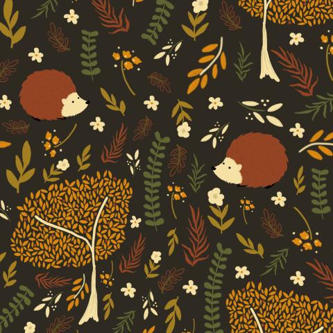 Осенний лес сказка
