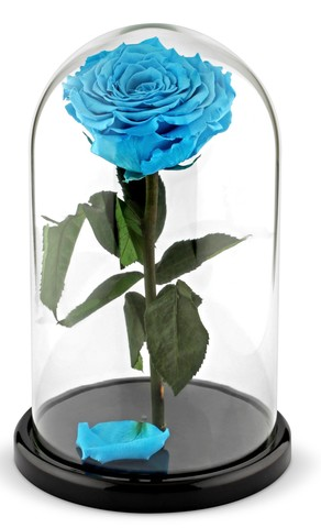 Вечная роза в стеклянной колбе голубая (Люкс)
