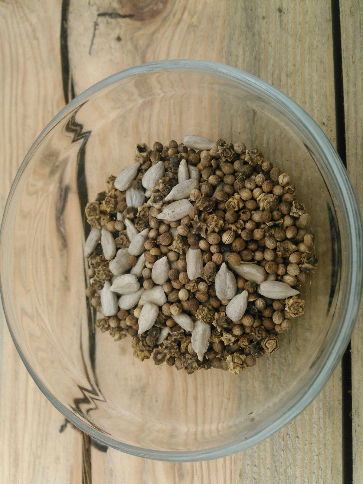 Семена Микрозелени  Мультивитамин 10 г. LUCKY HARVEST (Украина)