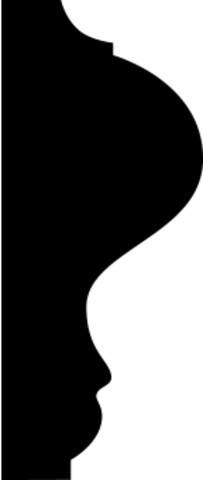 Молдинг гибкий 1.51.303