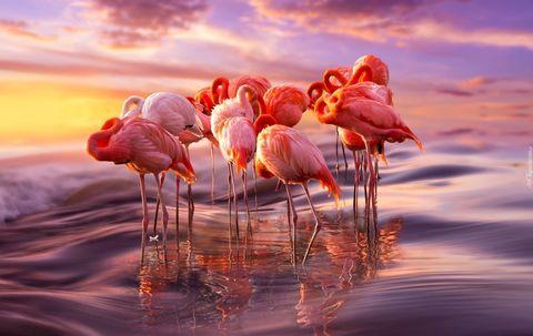 Алмазная Мозаика 40x50 Розовые фламинго (арт. GA74773 )
