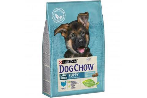 Сухой корм Purina Dog Chow для щенков крупных пород, индейка