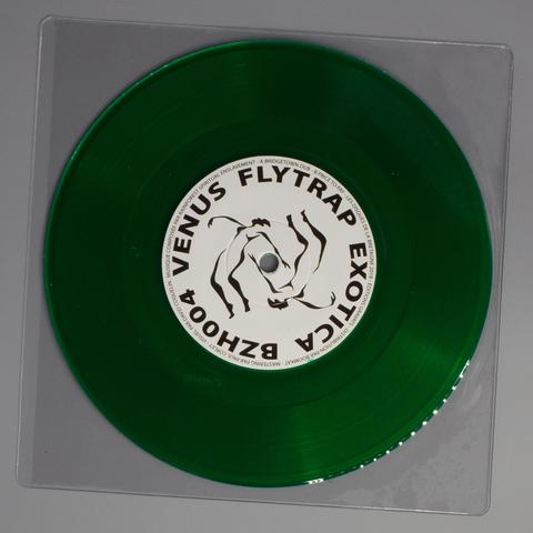Venus Flytrap Exotica