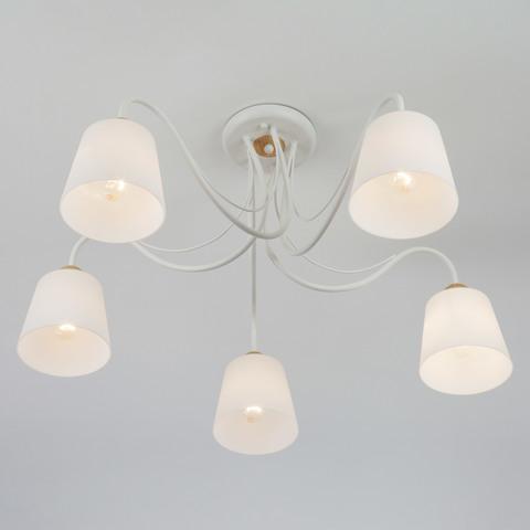 Потолочная люстра со стеклянными плафонами 70062/5 белый