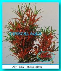Растение Атман AS-113A, 20см