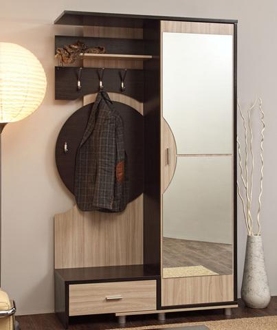 Шкаф комбинированный Визит-М09