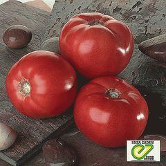 Усмань F1 семена томата детерминантного (Enza Zaden / Энза Заден)