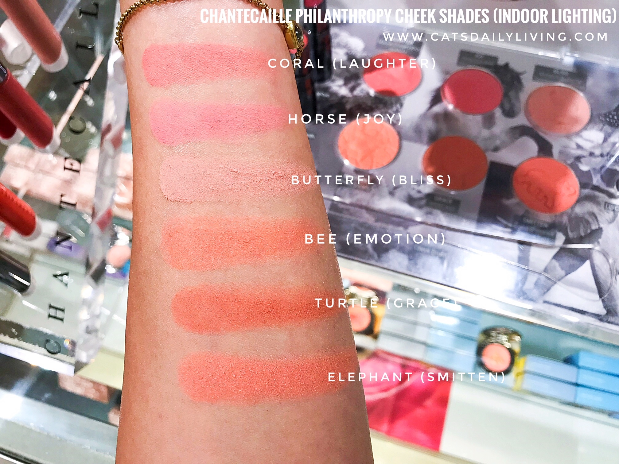 CHANTECAILLE Philanthropy Cheek Shade Emotion