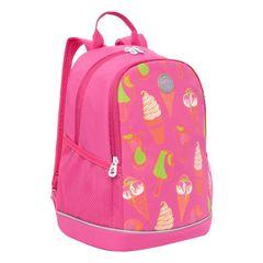 Çanta \ Bag \  Рюкзак школьный (/1 жимолость) RG-163-4