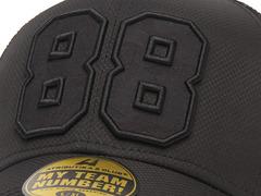 Бейсболка № 88