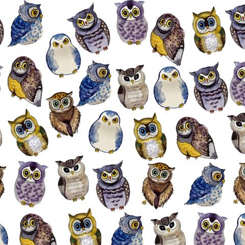 Акварельные совы
