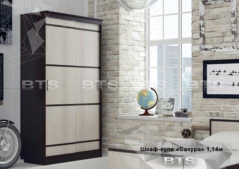 шкаф - купе Сакура