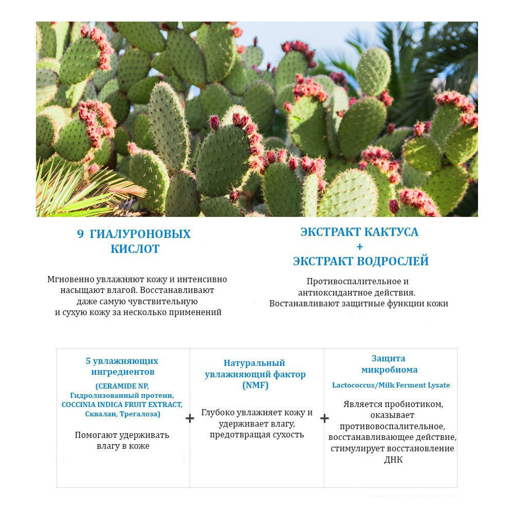 Набор из 11 тканевых масок и очищающей пенки с экстрактом кактуса и морскими водорослями HYAL CACTUS+RESURRECTION PLANT+SEAWEED