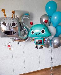 Шары роботы