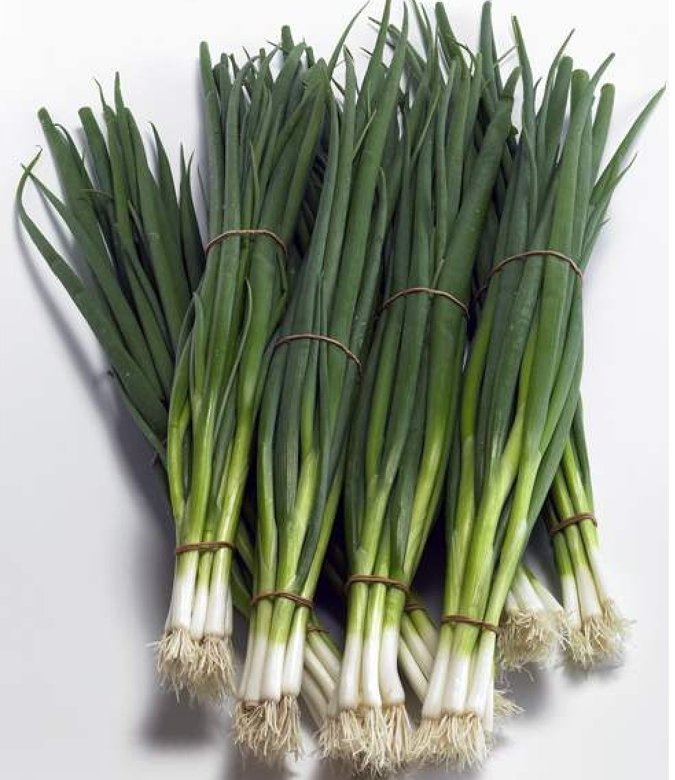 На перо Тотем семена лука на перо (Sakata / Саката) Тотем_семена_лука_на_перо___Sakata__Саката___2_.jpg