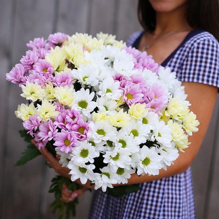 Купить букет хризантемы кустовые в Перми