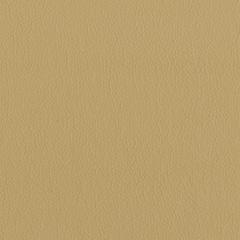 Искусственная кожа Lira (Лира) 2238