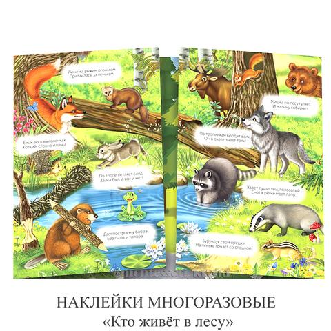 НАКЛЕЙКИ МНОГОРАЗОВЫЕ «Кто живёт в лесу»