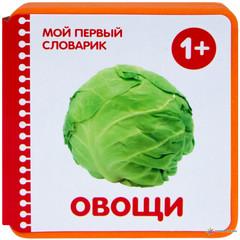 Мой первый словарик.Овощи