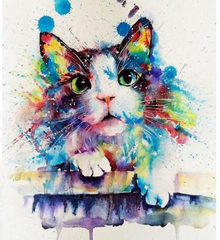 Картина раскраска по номерам 40x50 Разноцветная кошка