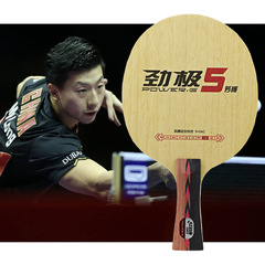 DHS PG-5 New from Ma long