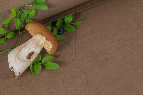 Моющаяся крафт-бумага цвет темный тауп, 5 размеров