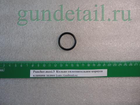 Кольцо уплотнительное корпуса клапана заднее Puncher.maxi3