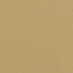Искусственная кожа Lira eсo beige (Лира эко бейдж)