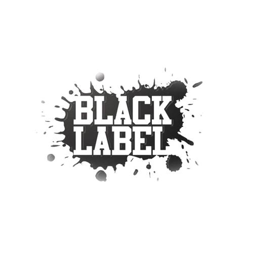 Лаки Black Label Matt Coat Лак Матовый Двухкомпонентный, 0,9л + 0,3л Bugtone BL1KIT.jpg