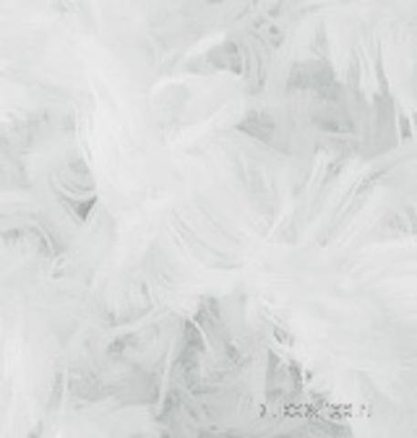 Alize Puffy Fur 6100, фото
