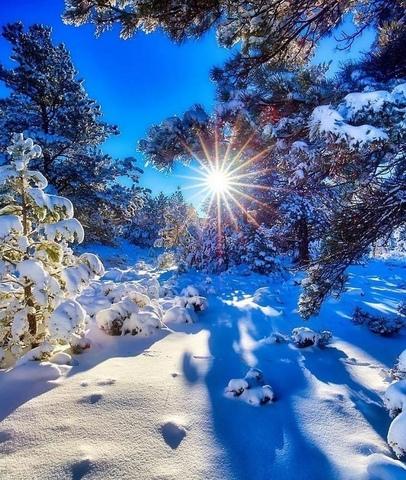 Алмазная Мозаика 40x50 Лучи солнца в зимнюю пору (арт. SGA2078 )