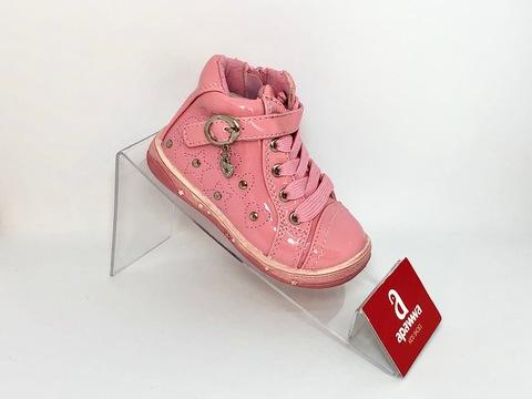 Apawwa D702 Pink 20-25