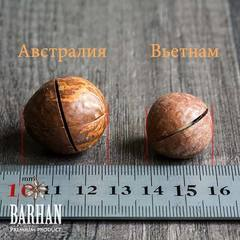 Размер орехов макадамия