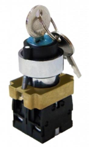 Переключатель BG45 черный 2 положения с ключом 1з+1р TDM