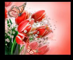 """Постер """"Красные тюльпаны"""""""