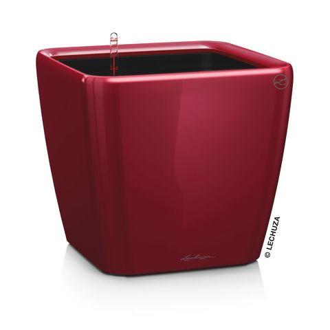 16287 Кашпо LECHUZA Квадро 50 LS Красное с системой полива и съемным горшком
