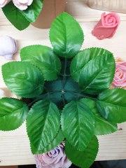 Лист розы люкс (10шт)