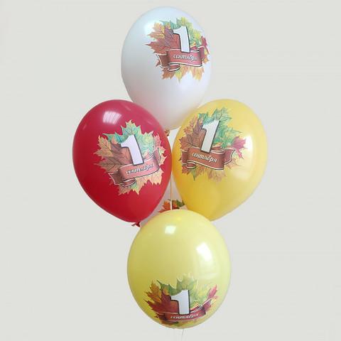 Воздушные шары 1 сентября 5 цв.