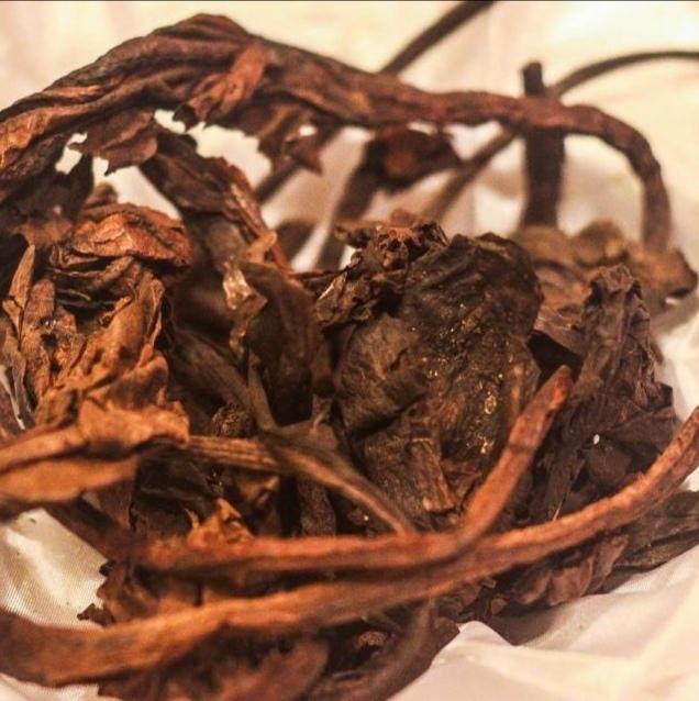 Травы Бадана корень bergenia-root-03.jpg