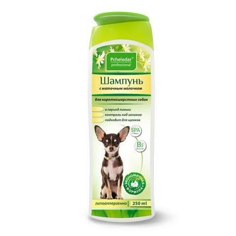 Шампунь Пчелодар с маточным молочком для короткошерстных собак