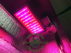 LED светильник Malaysia 300w Multi Spectrum