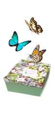 Салют из 3 бабочек