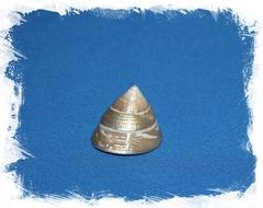 Трохус Макулатус Перламутровый 4 см
