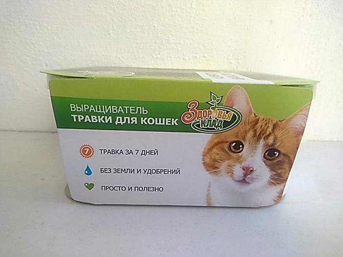Проращиватель для зелёной травки, для кошек.