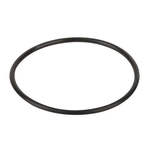 Уплотнительное кольцо корпуса насоса Aquaviva SMP / 19894