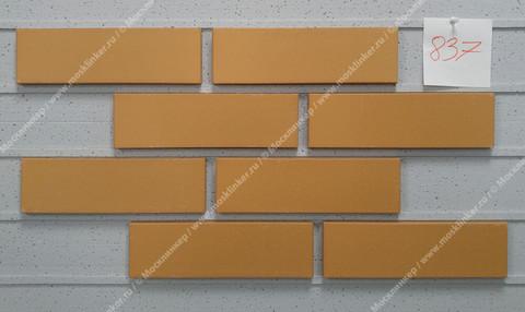 Roben - Sorrento, gelb orange, NF14, 240x14x71, гладкая (glatt) - Клинкерная плитка для фасада и внутренней отделки