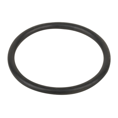 Уплотнительное кольцо соединительной муфты насоса Aquaviva SMP / 19877