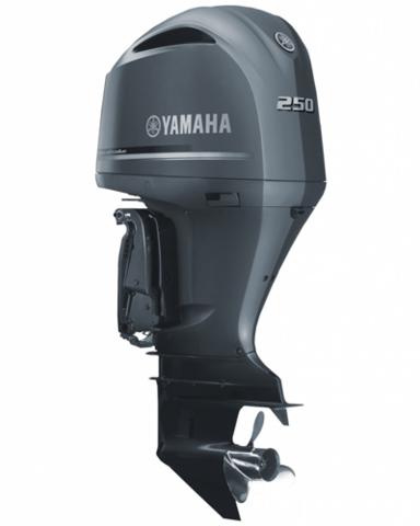 Лодочный мотор Yamaha F250 DETU