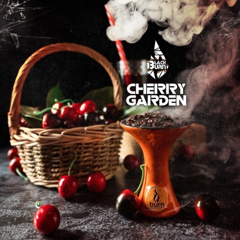 Табак Burn Black Cherry Garden 100 г